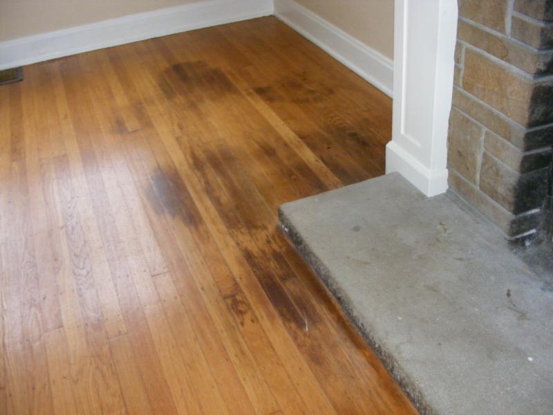 hardwood flooring pet stains, vs laminate flooring