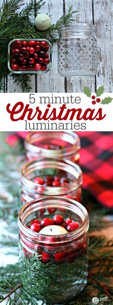 Christmas Luminary - DIY Christmas Decorations